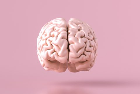 Día Mundial del Cerebro: enfermedades frecuentes y recomendaciones